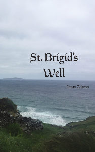 st-brigids-well-cover
